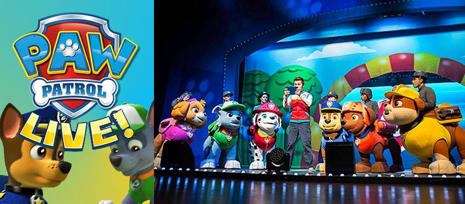 Paw Patrol at Shea's Buffalo Theatre
